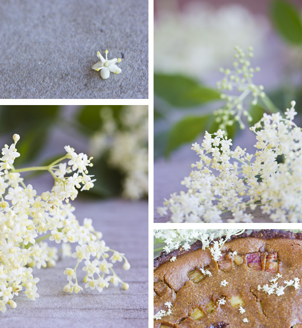 Elderflower Rhubarb Pie collage