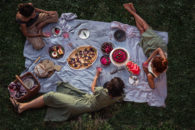 picnic scene from above
